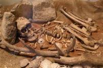 Carnac ossements